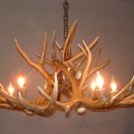 Mule Deer Antler Chandelier with Antler Sockets